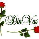 logo Din Vas